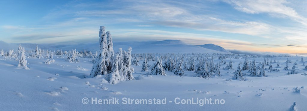 Winter Trysil, Norway 009