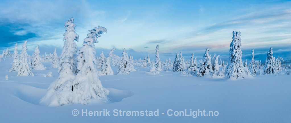 Winter Trysil, Norway 010