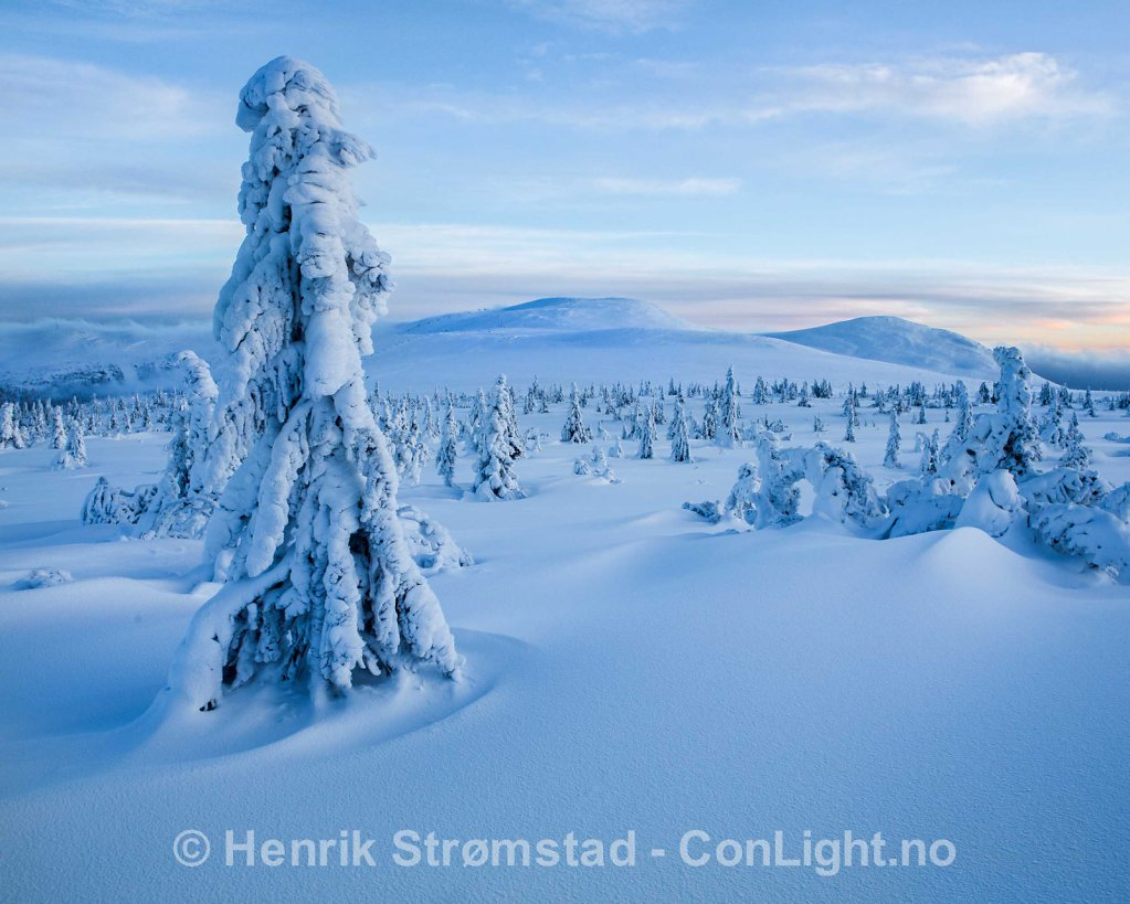 Winter Trysil, Norway 011