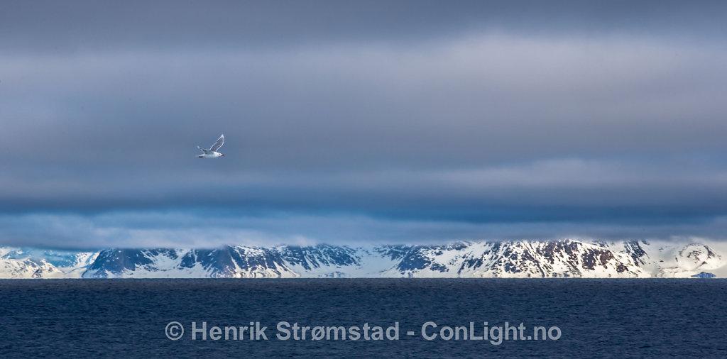 140611-Svalbard-0060.jpg