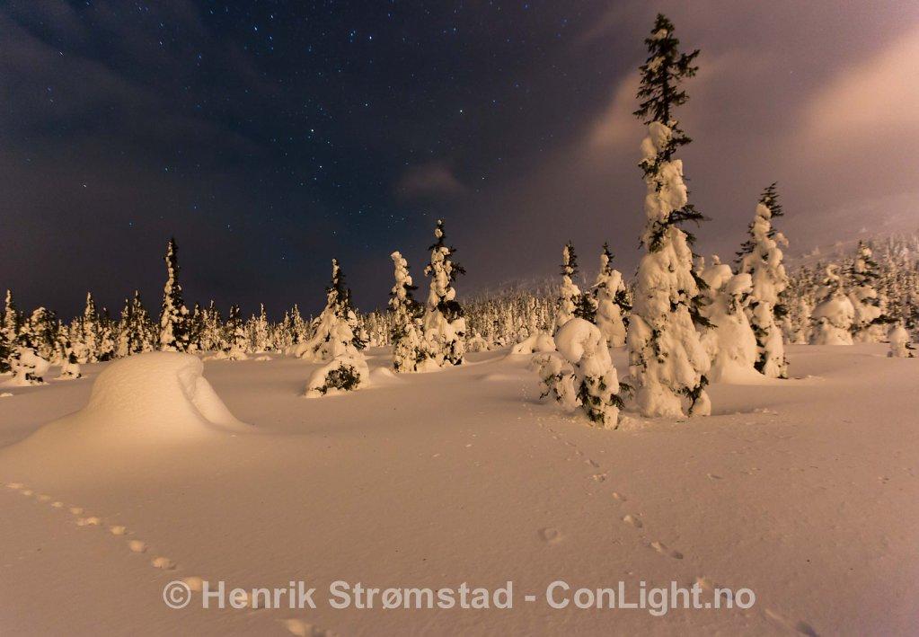 Night, Winter in Trysil, Norway 001