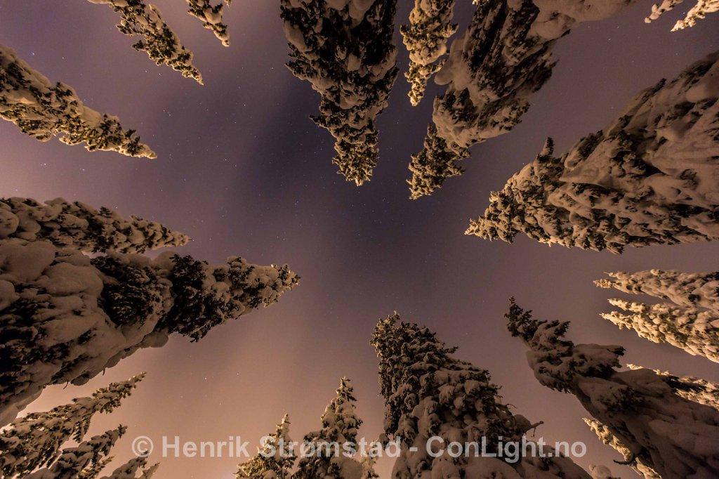 Night, Winter in Trysil, Norway 006