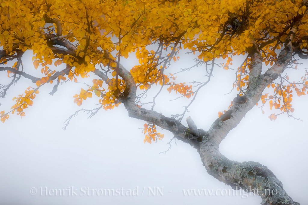 170923-Jotunheimen-0240.jpg