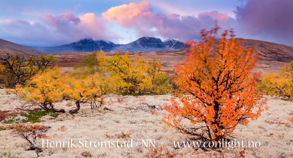 130914-Rondane-0069-Edit.jpg