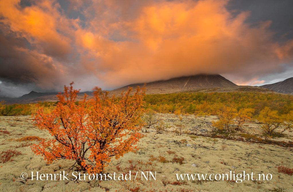 130914-Rondane-0072.jpg