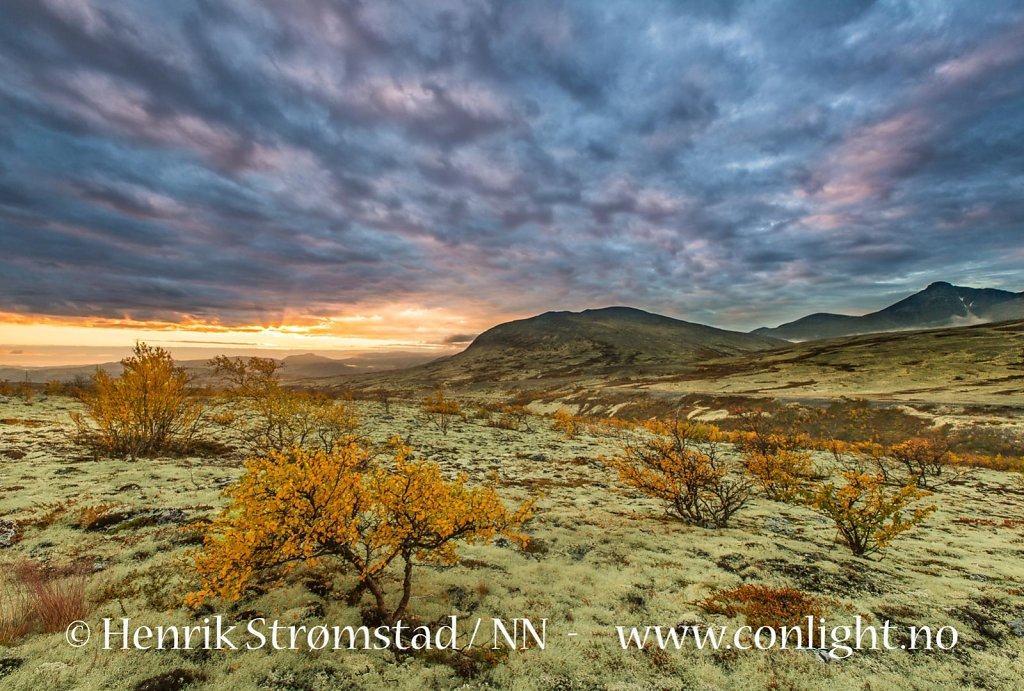 160917-Rondane-0862.jpg