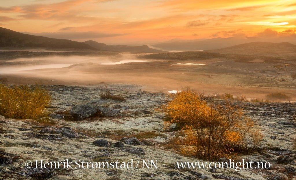 160918-Rondane-1135.jpg