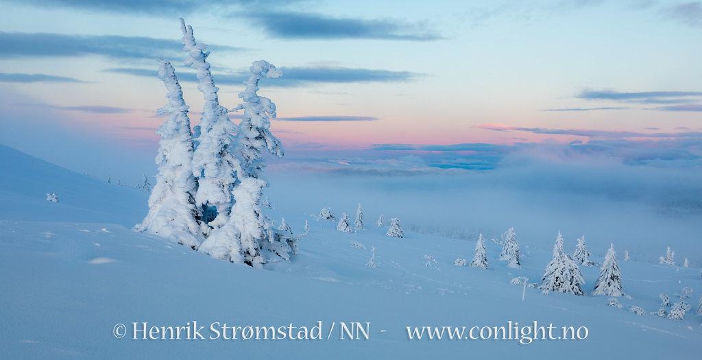 180102-Trysilfjellet-0195.jpg