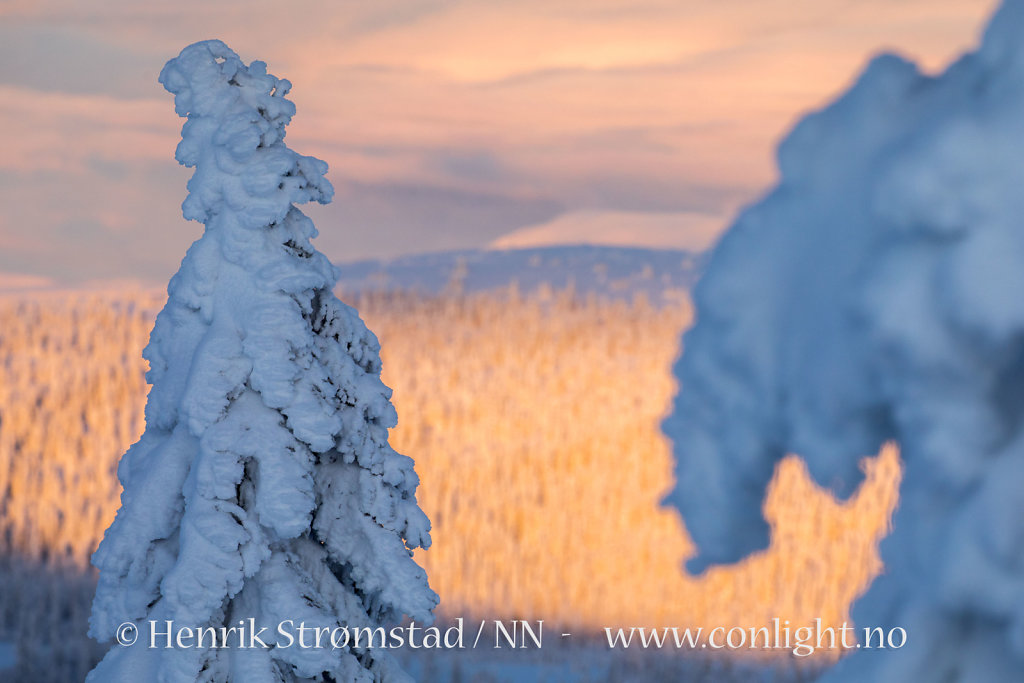180102-Trysilfjellet-0278.jpg