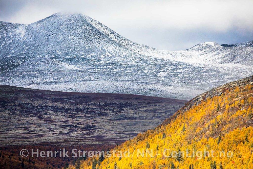 180922-Rondane-0237.jpg