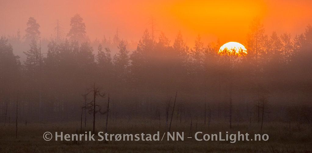 180904-Finland-Paradis-0165.jpg