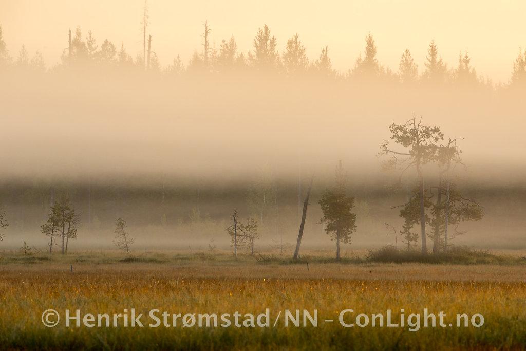 180904-Finland-1020.jpg
