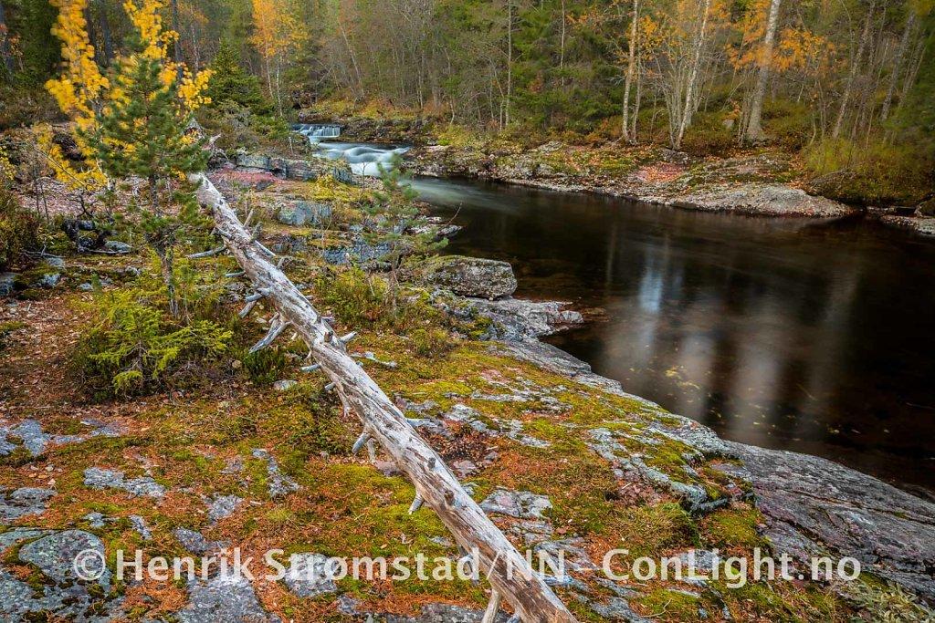 181005-Ljordalen-0064.jpg