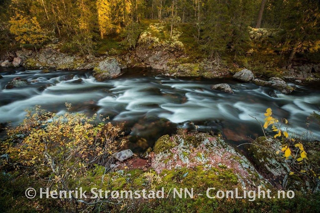 181005-Ljordalen-0075.jpg
