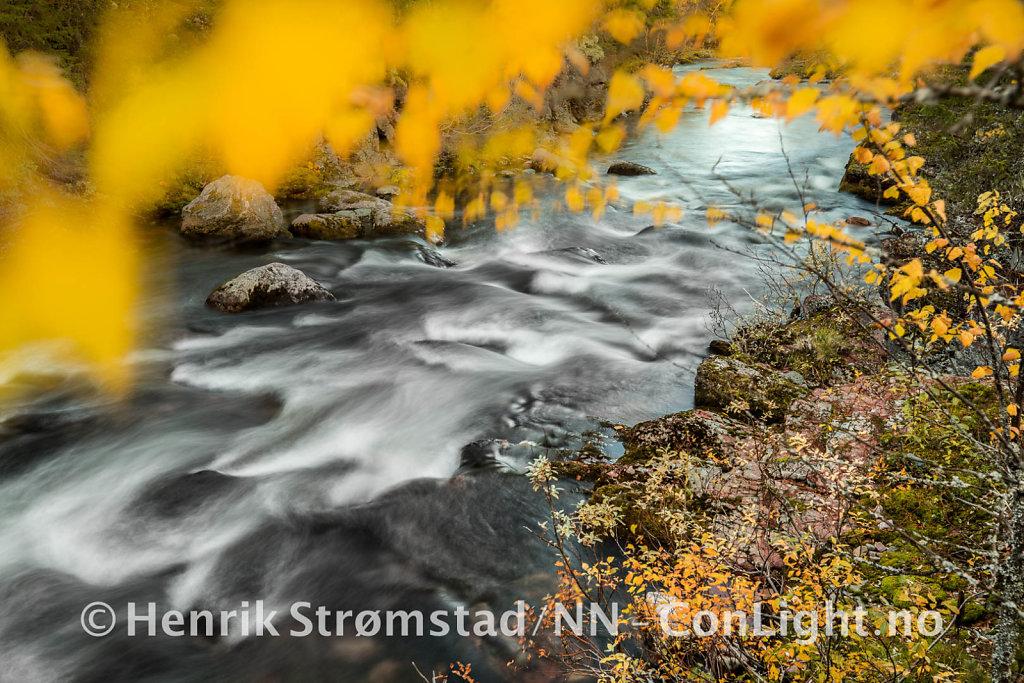 181005-Ljordalen-0082.jpg